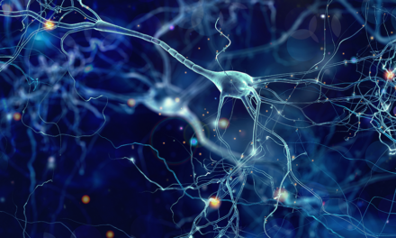 Scientists reverse age-related memory loss in mice
